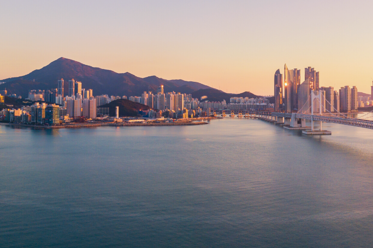 Mark your calendars: 19th IACC will take place on 1-4 December 2020 in Busan, Korea.